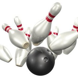 Fundraising Page: Lakeside Bowlers